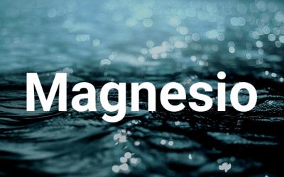 Cómo incluir magnesio en mi alimentación 3/3